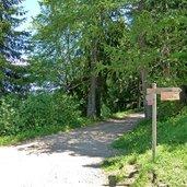D-0162-seiser-alm-weg-nr-3-abzweigung-gostner-schweige.jpg