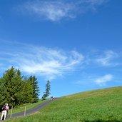 D-0771-seiser-alm-puflatsch-rundwanderweg-asphalt-teil.jpg