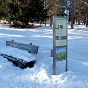 D-1050-seiser-alm-hans-paula-steger-weg-winter.jpg