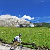 D-1343-seiser-alm-berghaus-zallinger-huette-mountainbiker.jpg