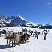 D-1425-Skigebiet-Seiser-Alm-Pferd-Kutsche.jpg