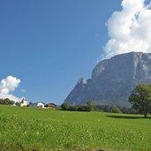 D-Voels-am-Schlern-Wiese-Baum-3484.jpg