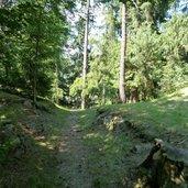 D_RS71402_0855-friedensweg-schattensteig-kastelruth.JPG