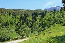 Von Saltria zur Dialer-Hütte