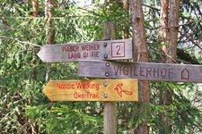 nordic walking trail voels