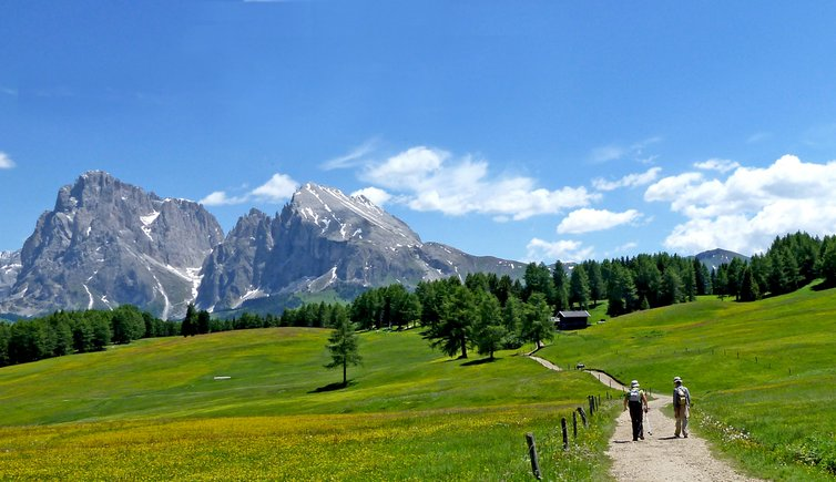Hiking tour on the Hans and Paula Steger Trail, Foto: AT, © Peer