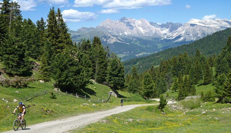 Giro dell'Alpe di Siusi in mountain bike, Foto: AT, © Peer