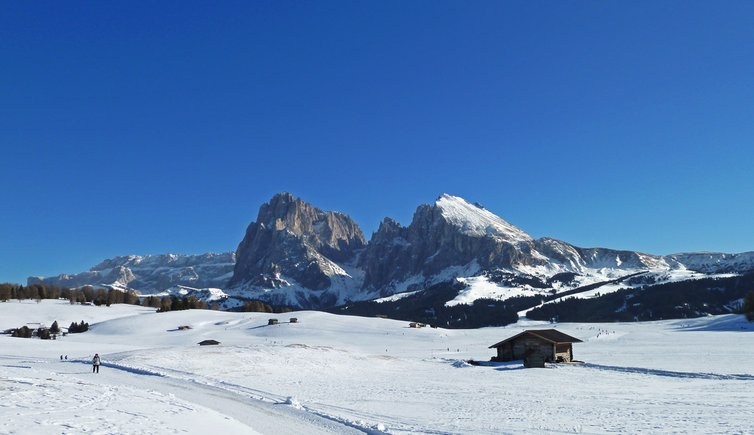 seiseralm winter alpedisiusi inverno