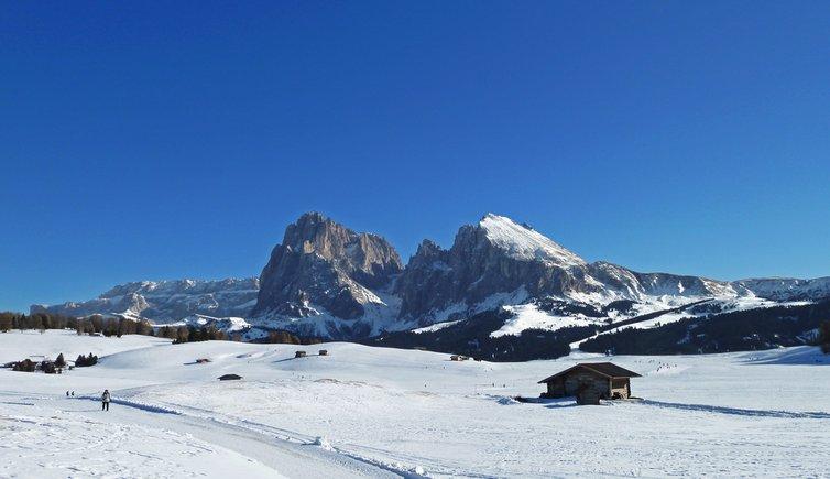 L'Alpe di Siusi, Foto: AT, © Peer