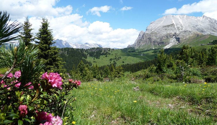 Natur & Landschaft, Foto: AT, © Peer